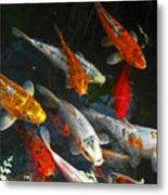 Koi Fish IIi Metal Print