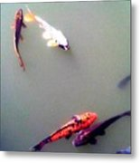 Koi Pond Brooklyn Metal Print