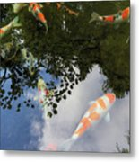 Koi Pond Reflection Metal Print