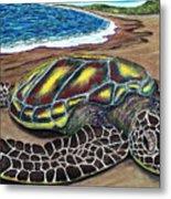 Kona Turtle Metal Print