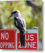 Kookaburra On A Road Sign Metal Print