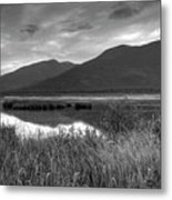 Kootenay Marshes In Black And White Metal Print