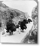 Korea: Farmers, C1904 Metal Print