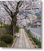 Kyoto In Bloom Metal Print