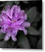 La Fleur Pourpre Metal Print