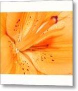 La Flower Metal Print