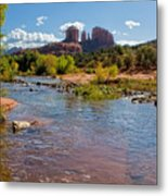 Lab In River At Sedona Arizona Metal Print