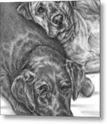 Labrador Dogs Nap Time Metal Print
