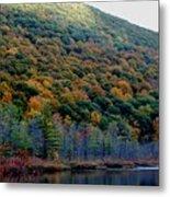 Labrador Pond Hillside Metal Print