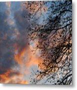 Lace In The Sunset Metal Print