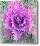 Lacey Plant Metal Print