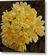 Lady Banks Rose Cluster Metal Print