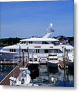 Lady Gayle Marie 2 Metal Print by Lois Lepisto