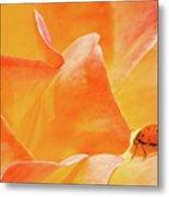 Ladybug Alights Metal Print