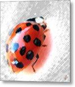 Ladybug Spectacular Metal Print