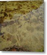 Lago Transparente Metal Print