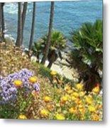 Laguna Beach, Southern California 12 Metal Print