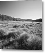 Laguna Meadows And Big Laguna Metal Print