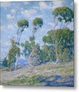 Laguna Trees Metal Print