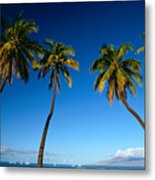 Lahaina, Five Coconut Tre Metal Print