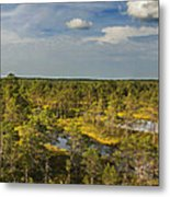 Lahemaa Panorama From Above Metal Print