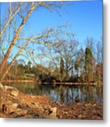 Lake And Trees In Early Spring Metal Print