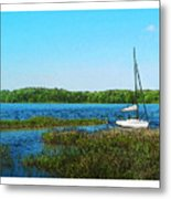 Lake At Hamony Fl Metal Print