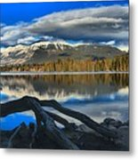 Lake Beauvert Roots Metal Print