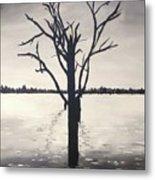 'lake Bonney' Metal Print
