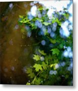 Lake Capture Metal Print