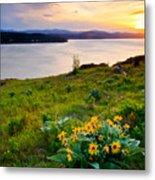 Lake Coeur D'alene Spring Metal Print