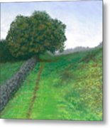 Lake District Trail Metal Print