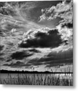 Lake Dora Black And White Metal Print