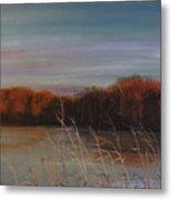 Quiet Lake Morning At Lake Dunn Village Creek State Park Ar Metal Print