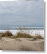 Lake Erie Sand Dunes Dry Grass And Ice Metal Print