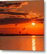 Lake Erie Sunset 7999 Metal Print