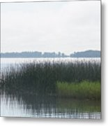 Lake Grasses Metal Print
