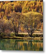 Lake In Autumn - 3 - French Alps Metal Print