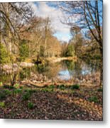 Lake In Early Springtime Woodland Metal Print