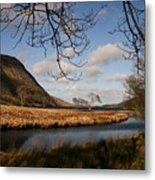 Lake In Glenveagh National Park No 1 Metal Print
