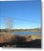 Lake In Lakeside Metal Print