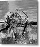 Lake Irene 12-4 Metal Print