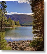 Lake Mary Forest Star Metal Print