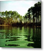 Lake Murray Trees Metal Print