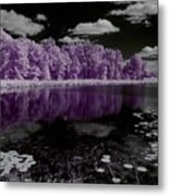 Lake On Another Planet Metal Print