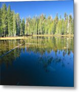 Lake Reflections Yosemite National Park California Metal Print