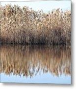 Lake Reflexion Metal Print