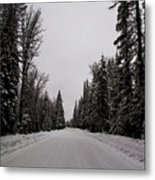 Lake Road Metal Print