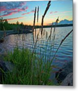 Lake Sunset And Sedge Grass Silhouettes, Pocono Mountains Metal Print