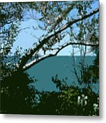 Lake Through The Trees Metal Print by Michelle Calkins